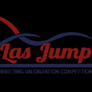 cropped-logo-las-jump.png