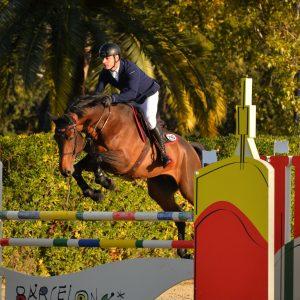 horse-breeding-stable-internationnal-horse-jump-1