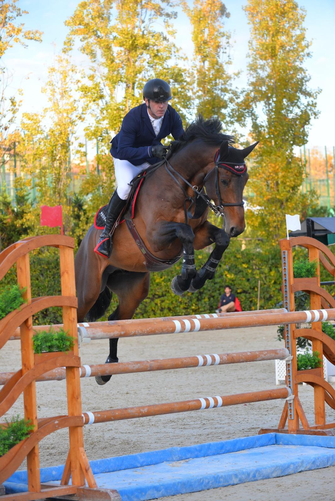horse-breeding-stable-internationnal-horse-jump-3