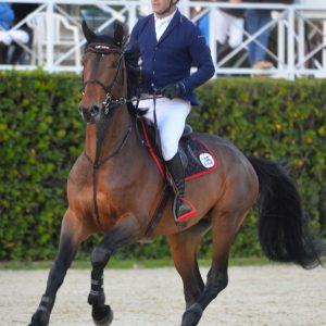 horse-breeding-stable-internationnal-horse-jump-6