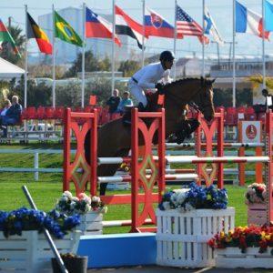 horse-breeding-stable-internationnal-horse-jump-7