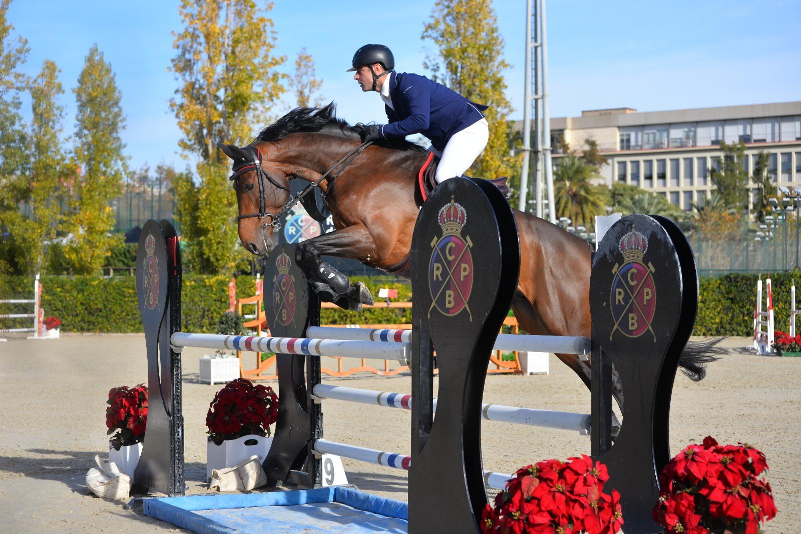 horse-breeding-stable-internationnal-horse-jump-9