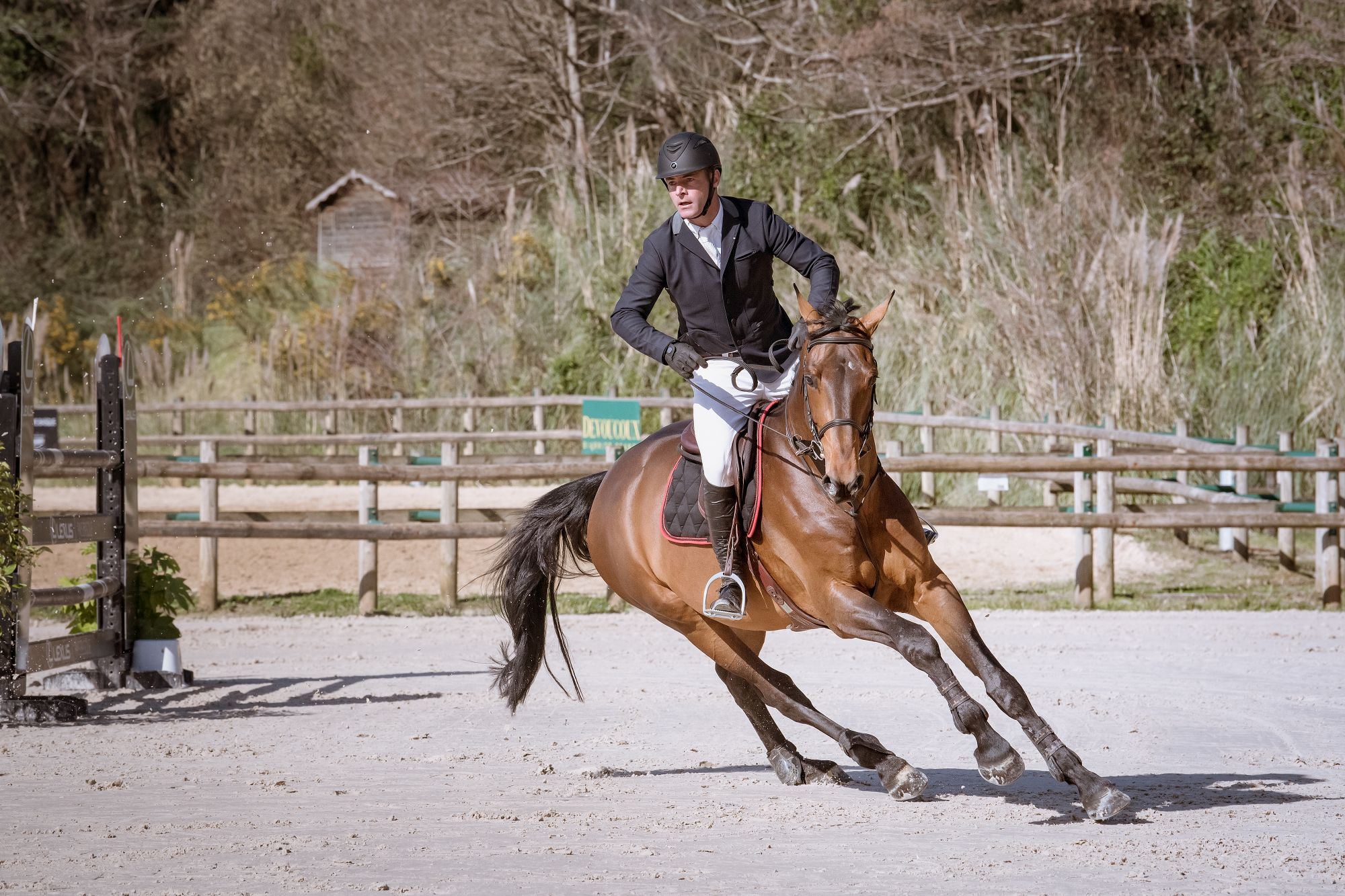 biarritz-show-jumping-horses