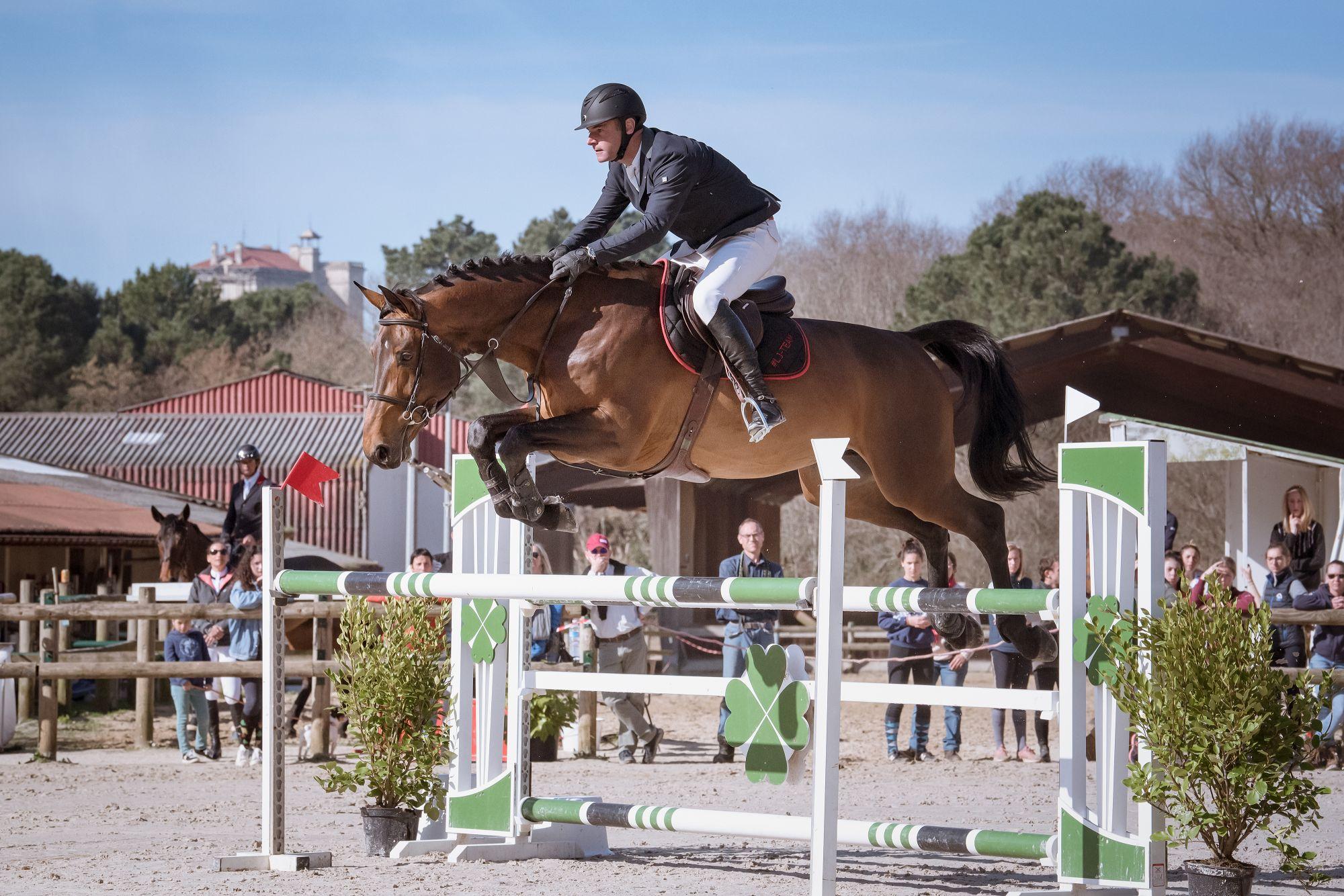 diamanti-van-de-helle-z-las-jump-biarritz-show-jumping-horses-feb-23-rd-2019-4
